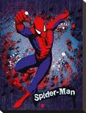 Spiderman-Splatter Tableau sur toile