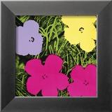 Fleurs, vers 1970 (1 violette, 1 jaune, 2 roses) Reproduction encadrée par Andy Warhol