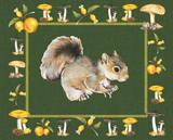Nice Animals Squirrels