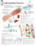 Laminated Understanding Diet and Nutrition Educational Chart Poster