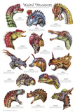 Laminated Weird Dinosaurs Educational Paleontology Science Chart Poster