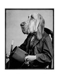 Chief Inspector Houndsbury