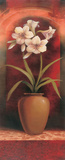Potted Orchid White