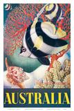 Australia  Great Barrier Reef c1956