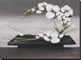 Bonheur D'Orchidées Blanches II Tableau sur toile par Olivier Tramoni