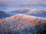 Snow and Rime Ice Coat a Blue Ridge Mountain Landscape at Dawn