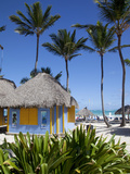 Bavaro Beach  Punta Cana  Dominican Republic  West Indies  Caribbean  Central America