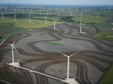 Spinning Turbines Cause a Drop in Air Pressure  Which Can Kill Bats