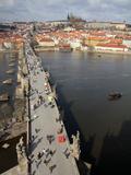 Charles Bridge over the River Vltava  UNESCO World Heritage Site  Prague  Czech Republic  Europe