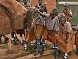 An Elephant Orphan Greets Schoolchildren Visiting Tsavo National Park