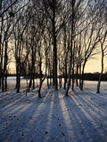 Winter Sunrise and Snow Covered Rural Landscape in the Countryside  Arrow Valley  Worcestershire  E