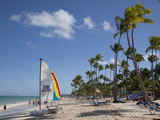 Bavaro Beach  Punta Cana  Dominican Republic  West Indies  Caribbean  Central America