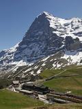 Kleine Scheidegg and Eiger Near Grindelwald  Bernese Oberland  Swiss Alps  Switzerland  Europe