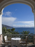 A Place for Tea  Funchal  Madeira  Portugal  Atlantic Ocean  Europe