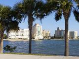 Sarasota  Gulf Coast  Florida  United States of America  North America