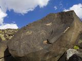 Petroglyph National Monument (Boca Negra Canyon)  Albuquerque  New Mexico  United States of America