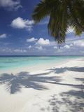 Tropical Beach  Maldives  Indian Ocean  Asia