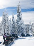 Snowmobilers in a Hoar Frosted Forest on Two Top Mountain  West Yellowstone  Montana  United States
