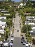 World's Steepest Street  Baldwin Street  Dunedin  Otago  South Island  New Zealand  Pacific
