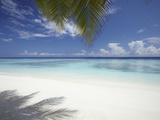 Maldives Tropical Beach  Maldives  Indian Ocean  Asia
