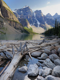 Log Jam on Moraine Lake  Banff National Park  UNESCO World Heritage Site  Alberta  Rocky Mountains