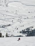 Skier at Jackson Hole Ski  Jackson Hole  Wyoming  United States of America  North America