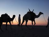 Camel Drivers at Dusk in the Sahara Desert  Near Douz  Kebili  Tunisia  North Africa  Africa