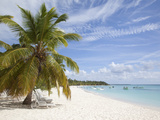 Saona Island  Dominican Republic  West Indies  Caribbean  Central America
