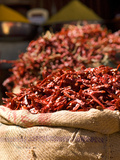 Chillies on Market Stall  Udaipur  Rajasthan  India  Asia
