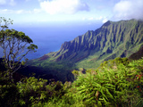 View Above the Na Pali Coast  Kauai  Hawaii  USA