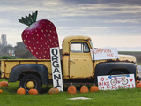 Route 1  Old Pickup Truck at Roadside Fruit Stand  Swanton  Central Coast  California  Usa