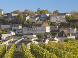 View with Unesco-Listed Vineyards  St-Emilion  Gironde Department  Aquitaine Region  France