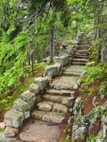 A Stone Staircase at the Thuya Gardens in Northeast Harbor  Maine  Usa