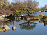 Hyde Park Neighborhood  Osaka Japanese Garden in Jackson Park  Chicago  Illinois  Usa
