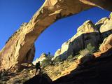 Hiker Below Natural Navajo Sandstone Hickman Bridge  Capitol Reef National Park  Utah  Usa