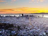 City Skyline Viewed from Twin Peaks  San Francisco  California  USA
