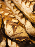 France  Moselle  Lorraine Region  Metz  Covered Market  Artisan Bread