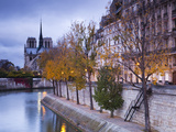 France  Paris  Cathedral Notre Dame Cathedral and Ile St-Louis  Dawn