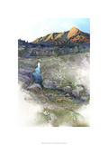 Flatirons Sunrise - Boulder  Co