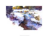 Snake River Meadow - Keystone  Co