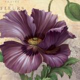Purple Garden I