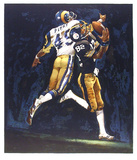 NFL Superbowl XIV