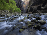 The Virgin River and Virgin River Canyon in Zion National Park  Utah