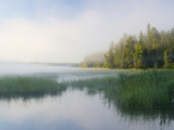 Lake Itaska  the Headwaters of the Mississippi River  Itaska State Park  Minnesota  USA