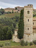 Vineyards  St Antimo Abbey  Montalcino  Tuscany  Italy