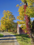 Road Beside Classic Rural Barn/Farm in Autumn  New Hampshire
