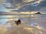 Koki Beach Near Hana  Maui  Hawaii  USA with Alau Island in the Distance