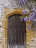 Heavy Oak 17th Century Door Studded with Iron Chinese Wisteria