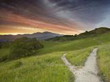 Trails  Mt Diablo Near Walnut Creek  Central California  USA