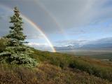 Double Rainbow  Denali National Park  Alaska Range Mountains  Alaska  USA